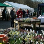 A chance to shop for plants as well as Art & Crafts
